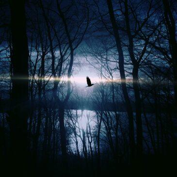 Afscheid in het donker